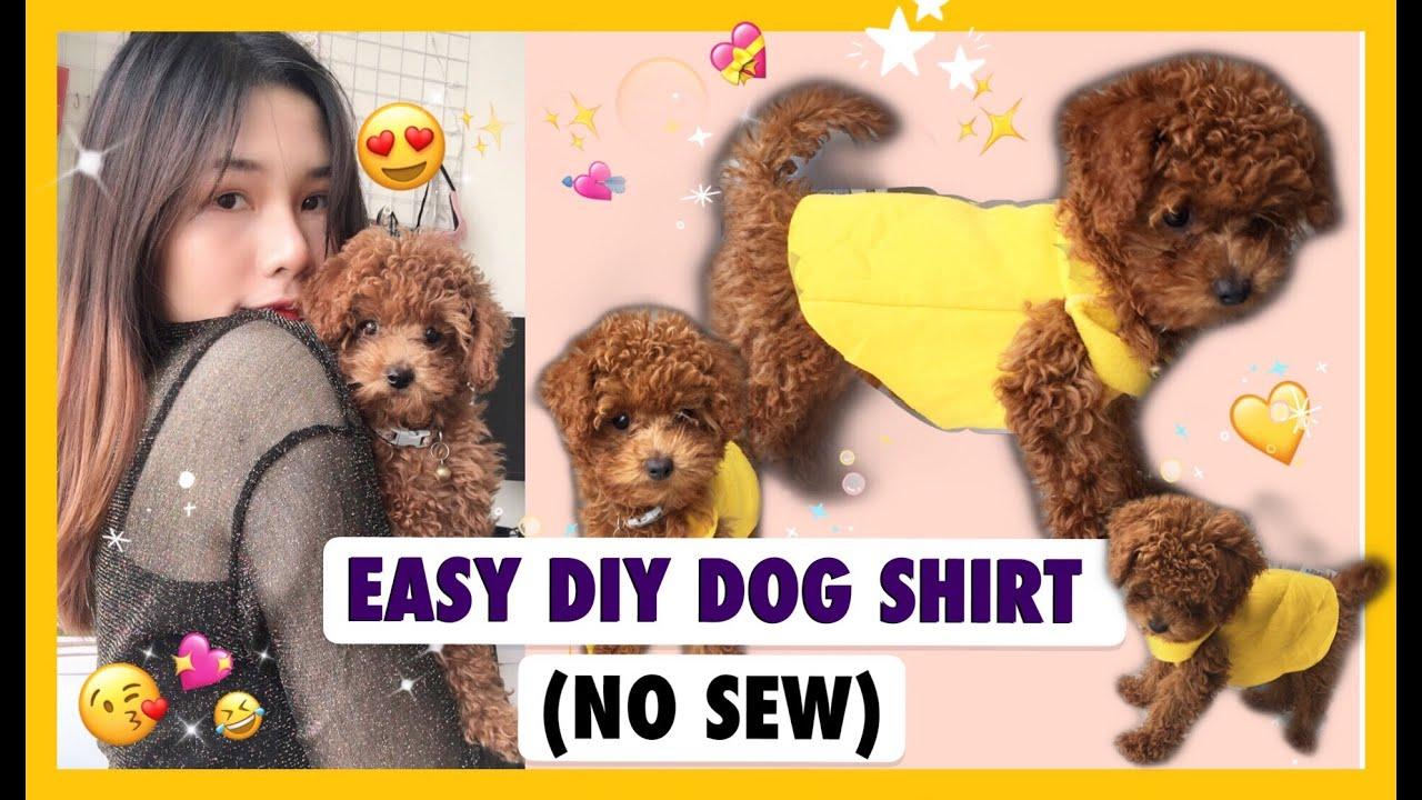 EASY DIY DOG SHIRT (no sew) / Tự làm áo cho chó từ áo hoodie – không cần máy khâu !