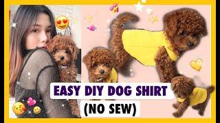 EASY DIY DOG SHÏRT (no sew) / Tự làm áo cнo chó từ áo h๐๐die - không cần máy khâu !