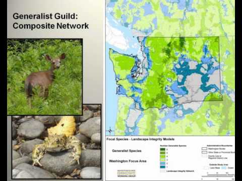 Washington Connected Landscapes Project - Statewide Analysis