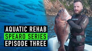 SPEARFISHING - 4 Seasons 2018 - New Zealand - SSE3