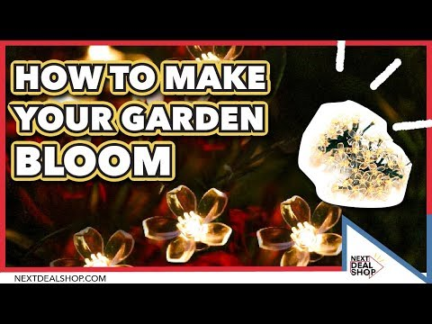 Solar Powered Blossom Flower String Lights - How To Make Your Garden Bloom - Next Deal Shop