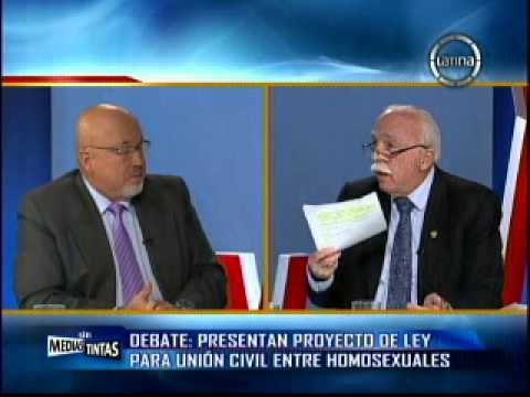 Proyecto de ley union civil homosexual carlos bruce