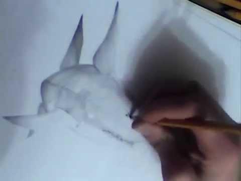 Рисунок акулы карандашом (уровень - любитель)
