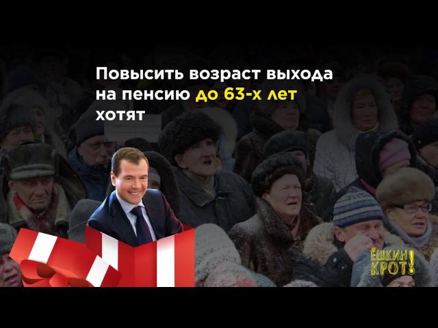 что будет после выборов в россии 2016 ядовитые растения фото