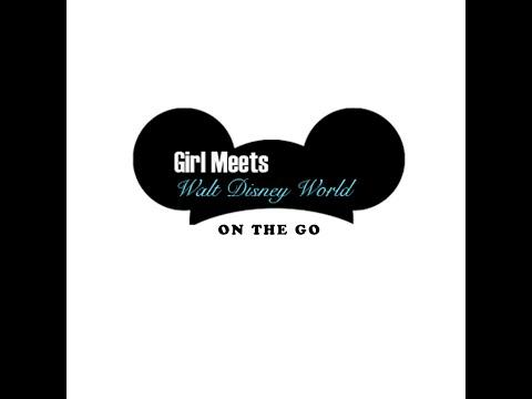 Disney World Stroller Rental Interview: Kingdom Strollers