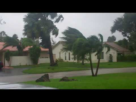 Hurricane Irma Gusty Winds Picking Up in Coral Springs on Sunday Afternoon Sept. 10, 2017