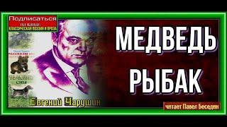 Медведь рыбак   —Евгений Чарушин —читает Павел Беседин