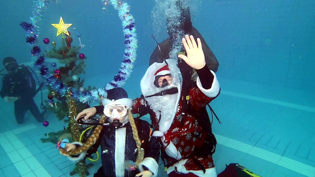 Новый год под водой - 2020. Астраханские дайверы отметили ...