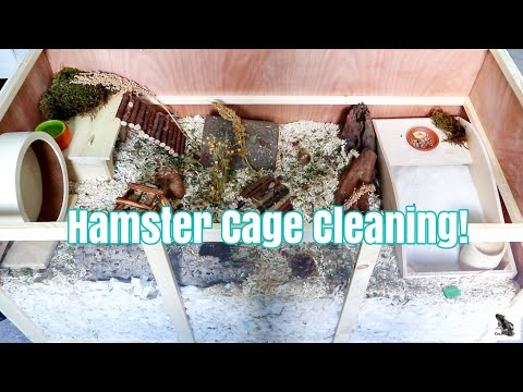german-inspired-hamster-cage-cleaning- -pawhut-cage