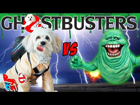 Funny dog vs Slimer Ghostbusters Doggy edition