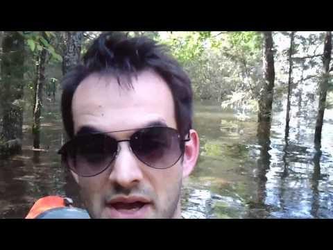 Kayaking the Percy Priest Walkway