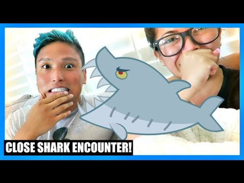 CLOSE SHARK ENCOUNTER!