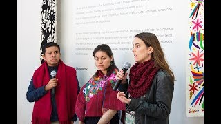Arte Textil Mexicano - Santiago de Chile