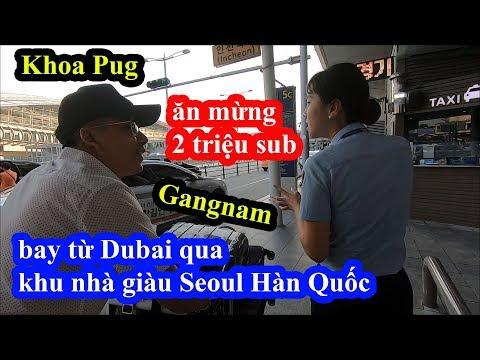 Chán Dubai - Khoa Pug bay qua khu nhà giàu Seoul Hàn Quốc ăn mừng 2 triệu sub - Intercontinental