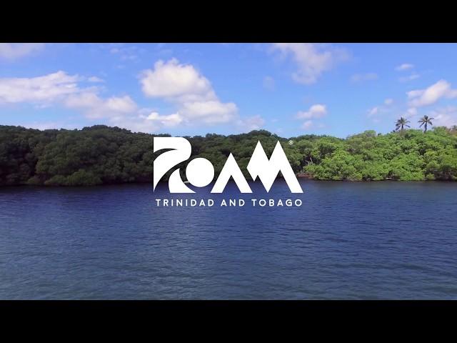 Tobago Boardwalk