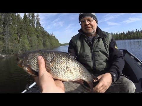 Вот такая рыбалка!