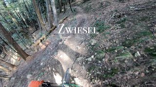 Zwiesel MTB (Bad Tölz)