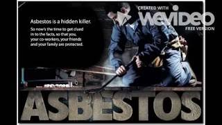 Pro Abatement   Asbestos Removal