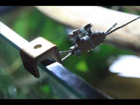 Tirantatura acquario con cavi in acciaio youtube for Acquario vendesi