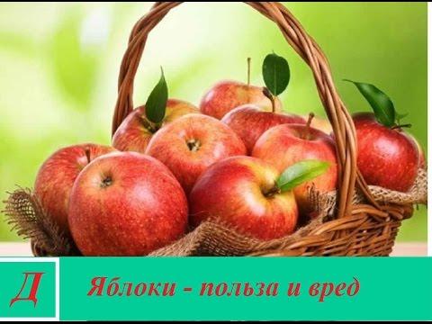 Польза и вред яблок. Полезные свойства и витамины.