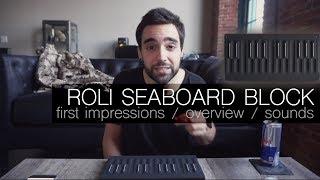 SEABOARD BLOCK - is it good?!? | ROLI Blocks Impressions