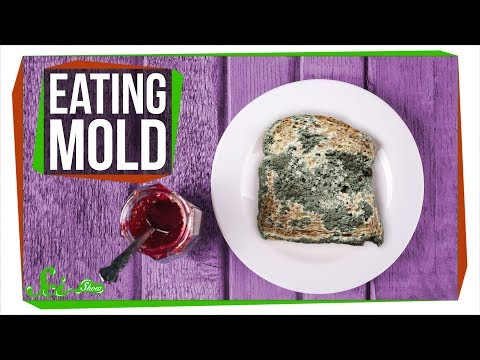 Maddox - What Happens If You Eat Mold?