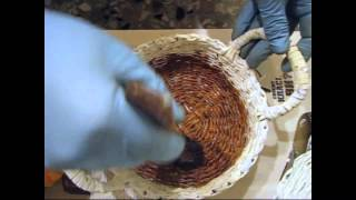 видео Лакирование древесины спиртовыми, масляными и нитролаками