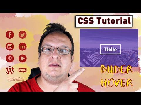 Bilder Text Hover Effekt / Text Overlay (Nur CSS Und HTML) [Anleitung / Tutorial]