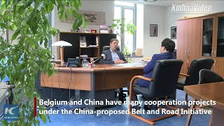Belgium very open to BRI cooperation: official
