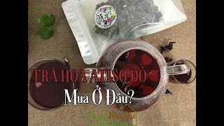 TRÀ HOA ATISO ĐỎ MUA Ở ĐÂU? - Where To Buy Hibiscus Tea?