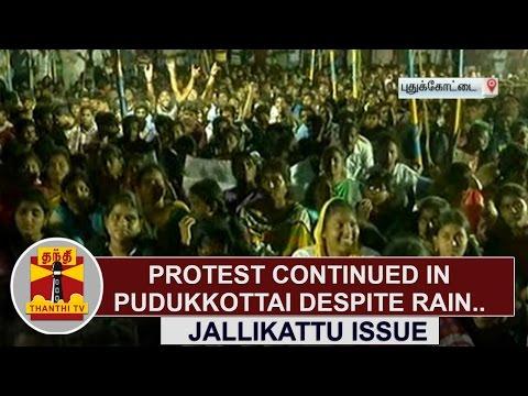 Jallikattu Issue : Protest continued in Pudukkottai despite rain | Thanthi TV