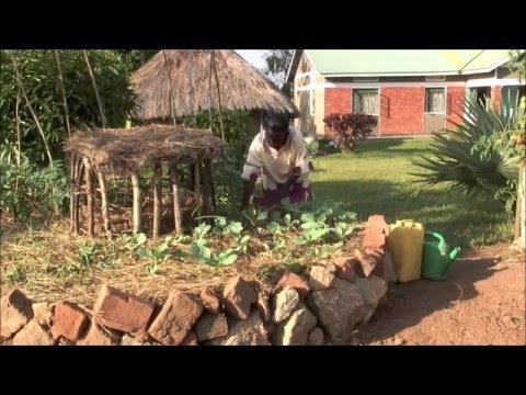 The Inventive African Keyhole Garden - Uganda