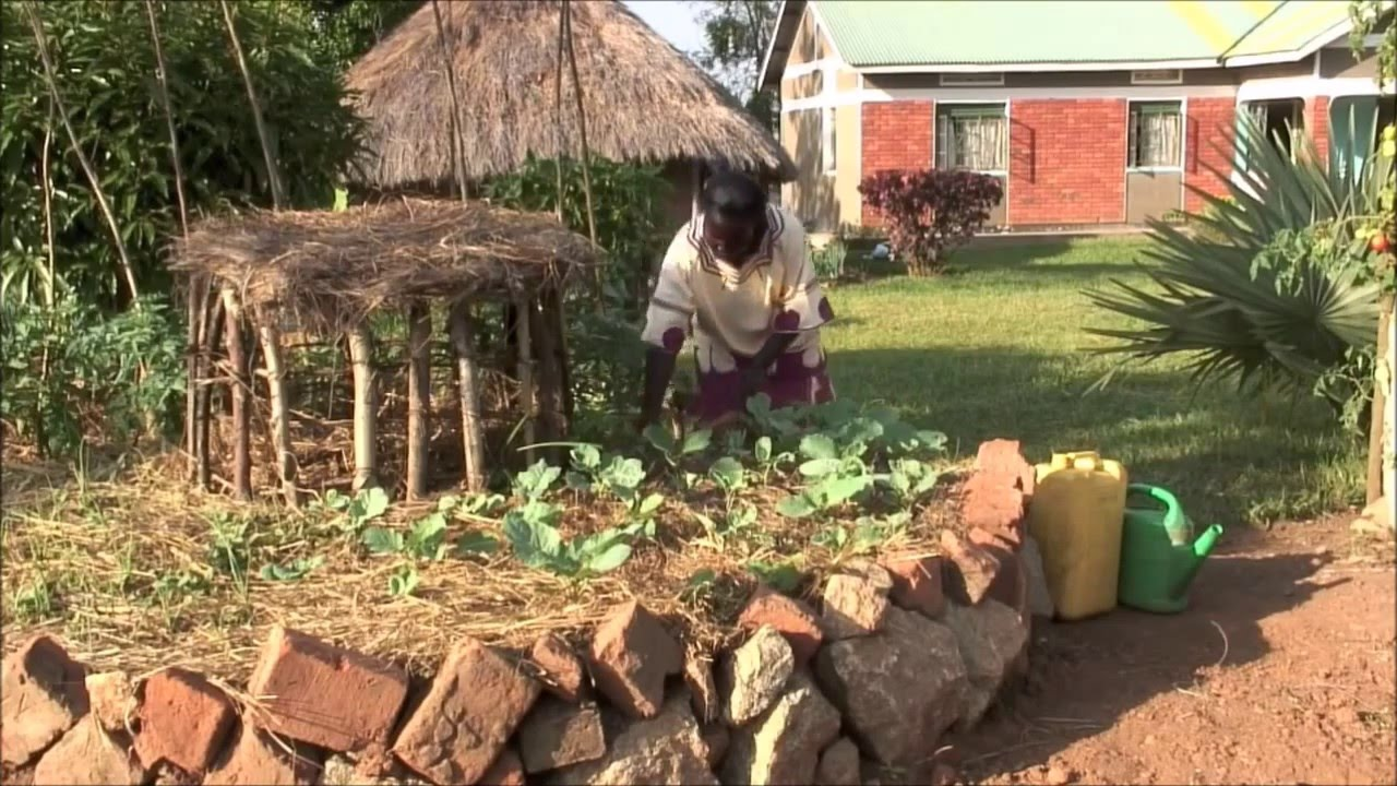 The Inventive African Keyhole Garden - YouTube