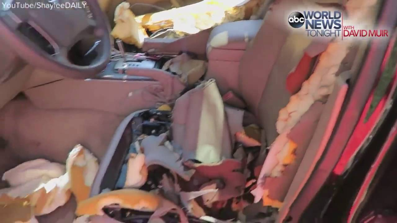 a bear cub completely destroyed the interior of one family s car youtube. Black Bedroom Furniture Sets. Home Design Ideas