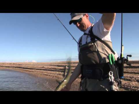 Wade Fishing On Chandelier Island The Fisherman's Guide Season 2 Episode 2