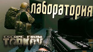 ЕмБезХлеба!вэб-камера!Escape From Tarkov.  Лабор...