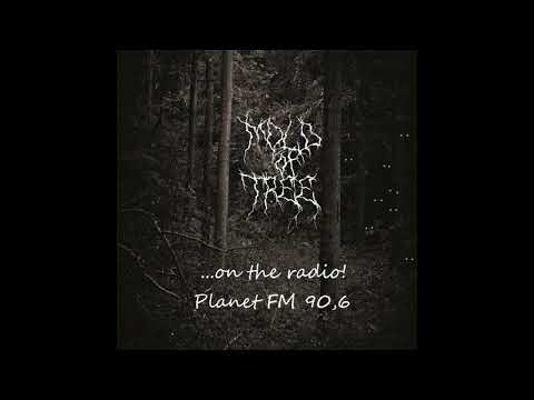 Mold of Tree on the radio [w/ English subtitles]