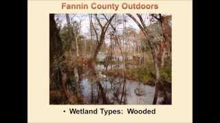 Visit Bonham and Fannin County