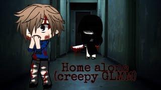 Home alone(GLMM)