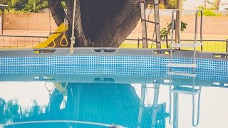 CHEAP DUDE REPAIRS ABOVE GROUND POOL!(, 2016-05-06T20:51:21.000Z)