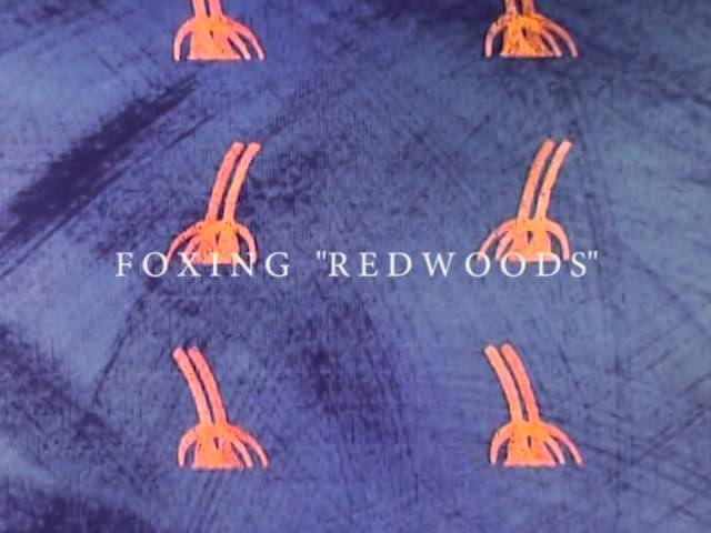 foxing-redwoods-official-audio-triplecrownrecords