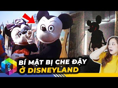 9 Bí Mật Bị Che Giấu Tại Công Viên Disneyland Không Muốn Cho Bạn Biết - Top 1 Khám Phá