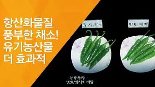 항산화물질 풍부한 채소! 유기농산물 더 효과적 - (2…