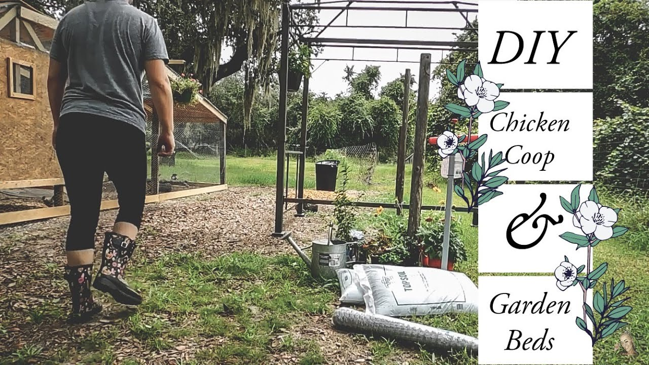 Welcome to our Homestead   DIY Chicken Coop and Garden Bed …The beginning of our journey