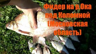 рыбалка на фидер на р Ока в Коломне Московская область