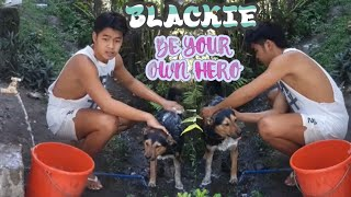CUTE LITTLE DOG NAME BLACKIE@IVY MIRANDA VLOG