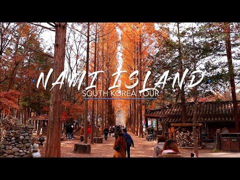 MOST BEAUTIFUL PLACE IN KOREA! 😍 Nami Island   Seoul, South Korea Travel