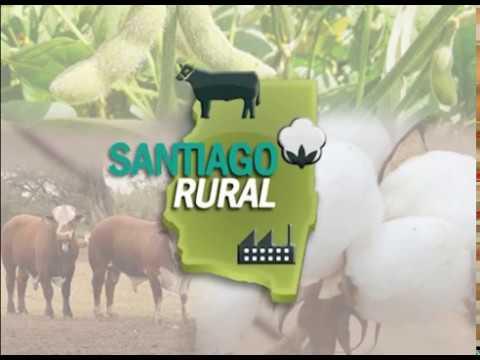 Santiago Rural 130