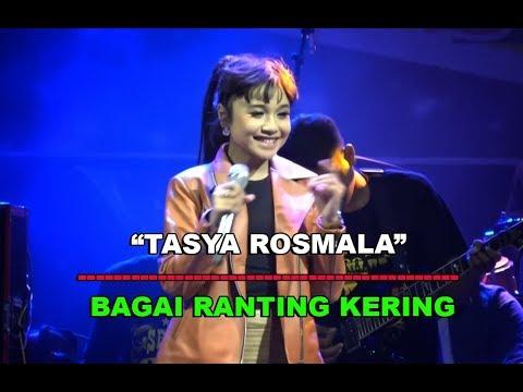Tasya Rosmala - Bagai Ranting Kering - OM Adella LIVE Ambarawa Jawa Tengah