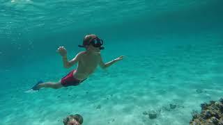 Фридайвинг Подводная охота дайвинг дети под водой. Freediving